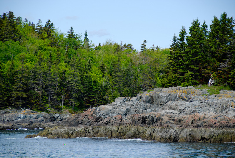 "<span id=""title"">Coastline</span> One of the Porcupine Islands around Bar Harbor - Burnt Porcupine, I think. I like this shot because it shows the water, the rocky coast, and the trees. Pretty typical of the area."