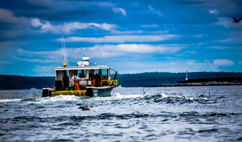 Lobstering Near Eagle Island