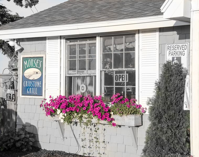 Renowned by Locals in Harpswell