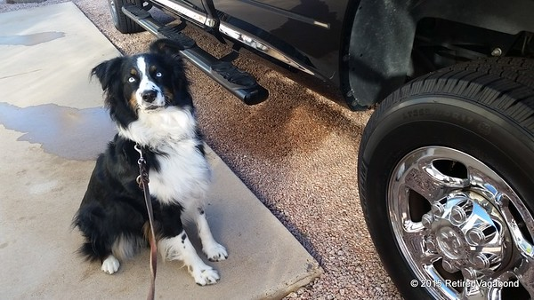 Jagger likes the new tires for the Workhorse