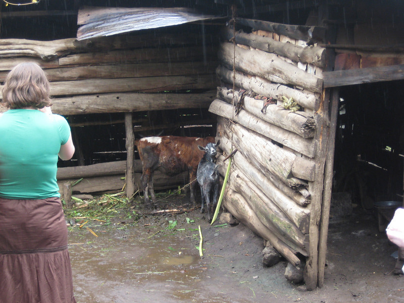 D2 Makumira Farms i