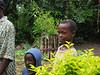 D2 Makumira Farms s