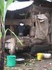 D2 Makumira farm a