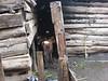 D2 Makumira Farms l