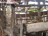 D2 Makumira Farms n