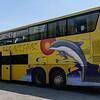 Cross Island Express Bus