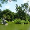 Singapore Botanic Garden