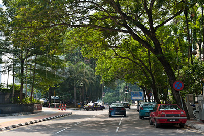 Куала Лумпур очень зеленый город