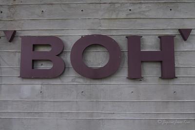 Boh Sungei Palas Tea Centre