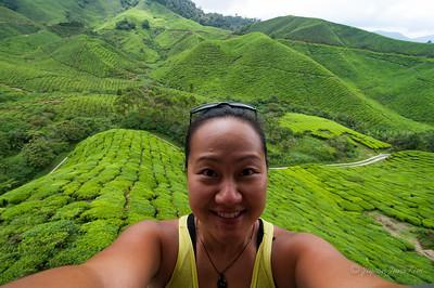 Me at Boh Sungei Palas Tea Centre
