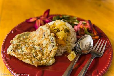 Vegetarian meal at Samkkya