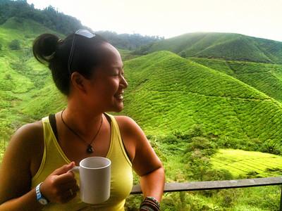 Drinking tea at BOH tea plantation