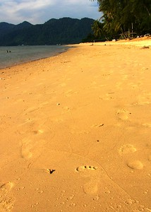 footprints 0398_r1