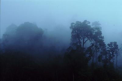 Malaysian Borneo