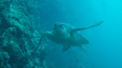 maldives17-010