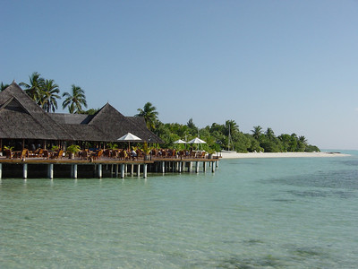 Stilted oasis