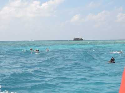 Turtle Reef &  Biyadhoo Reef