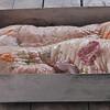 Raw Piglet