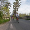 The ride out of Platja D'Alcudia toward Sa Pobla is flat and fast....