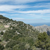 From Caimari the road climbs about 2500 feet before beginning the decent toward the Mediterranean and the port of Sa Calobra