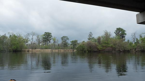 ManchacSwamp-6892
