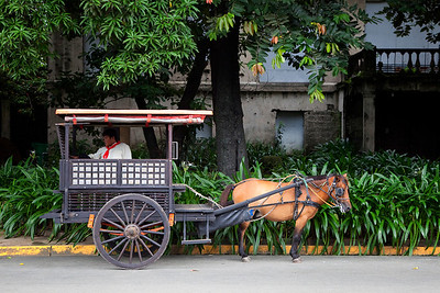 At Intramuros with the horse and carriage