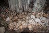 Skull Cave and Cannibal Leftovers
