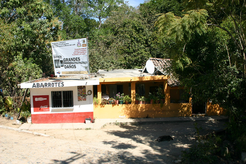 The first of the two tours that we took started in a small Mexican village about thirty minutes outside of Manzanillo.  It was up in the mountains.  This is the local restaurant with take-out window.