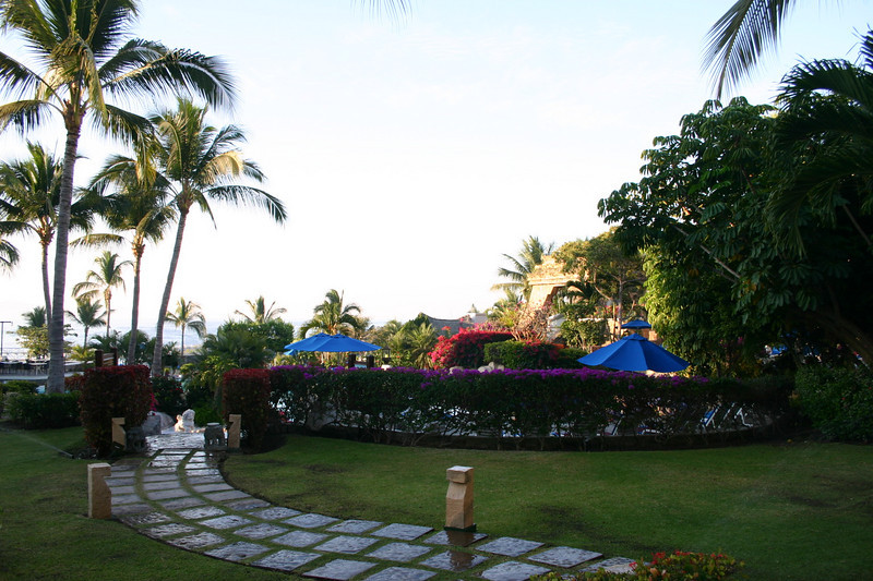This is a photo of the grounds at Karmina Palace, the other nice hotel on Las Hadas peninsula.  I took this photo while out on one my 75 minute early morning walks.