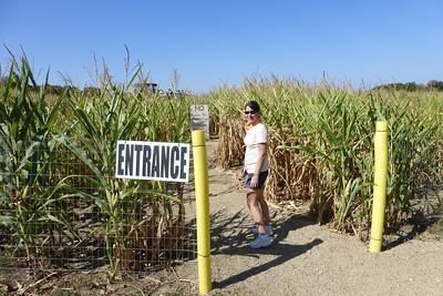 The beginning of the Corn Maze. Diane looks worried.