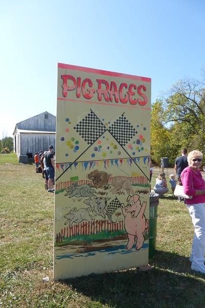 Pig Race!!