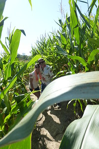 Us hidden in the corn
