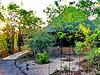 Mopane Bush Lodge, Mapungubwe NP