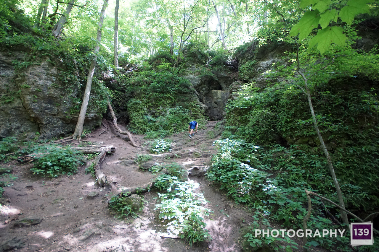 Maquoketa Caves Road Trip