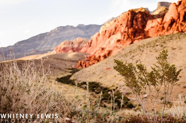 3.13 Day 2 Red Rocks
