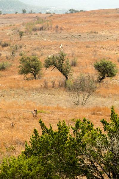 Balcones Canyonland National Wildlife Refuge
