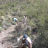 3.2.09 - Saguaro National Park - break time - Janet, Susan and Sofi