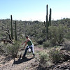 3.2.09 - Trail brushing in Saguaro National Park - Thunderbird Trail