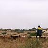 Dag3 Nador- Plateau du Rekham- Midelt