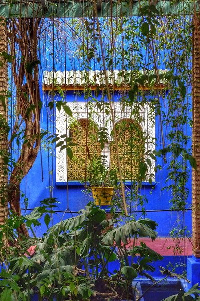 Marrakech - Jardin Marjorelle 2014