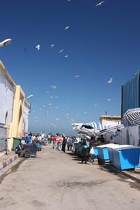 Essaouira-22-2
