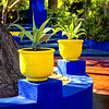 Two Yellow Pots