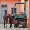 Horse and cart in Marrakesh, Morocco