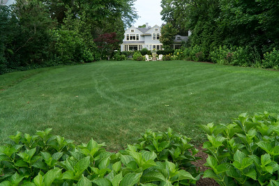 Now that's a big front lawn!