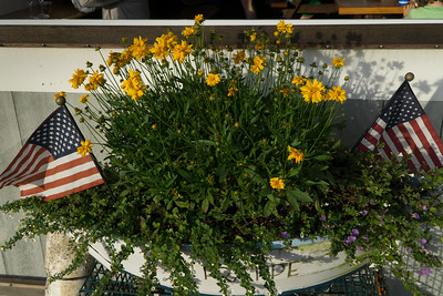 Flowers at the Galley in Menemsha.