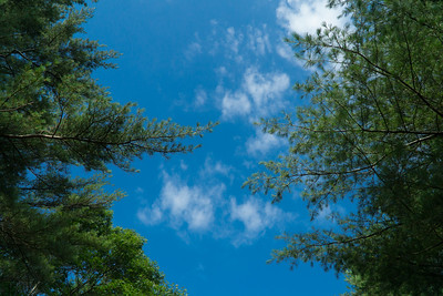 As you roll along on the bike path, just look up for a moment.