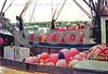 Boat decks filled with buoys copy vsm