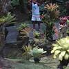 Jardin de Balata : les reporters photographes
