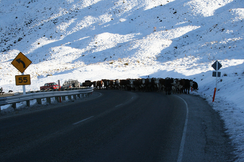 This was at the VERY TOP of a mountain pass - the guy had been on the road 3 hours already!
