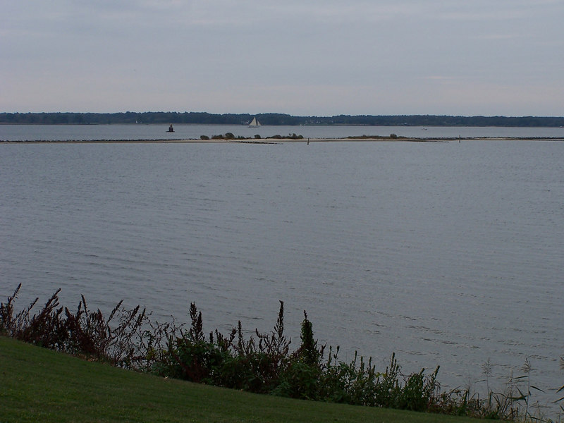 "View of the Choptank ""River""."
